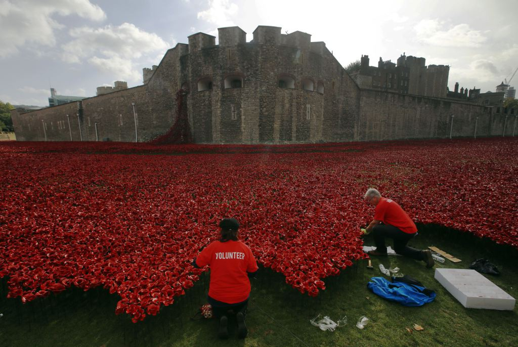 """Volunteers plant ceramic poppies amongst other poppies that form part of the art installation called """"Blood Swept Lands and Seas of Red"""" at the Tower of London"""